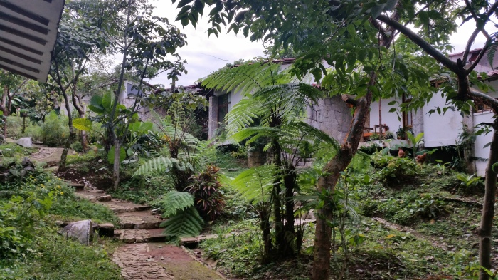 Unterkunft bei Tosepan